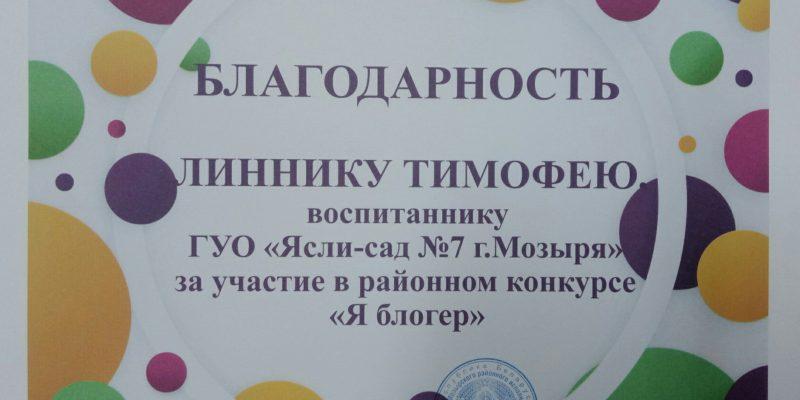 Результаты участия в  районном конкурсе «Я блогер»